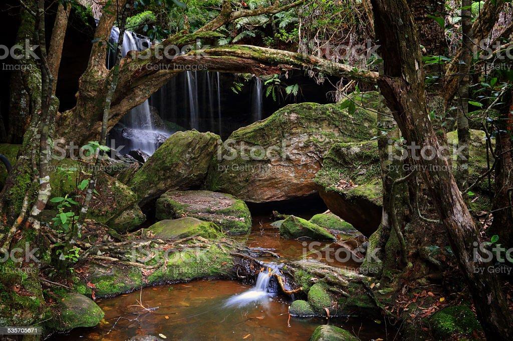 The lush Grotto at Fitzory Falls Australia stock photo