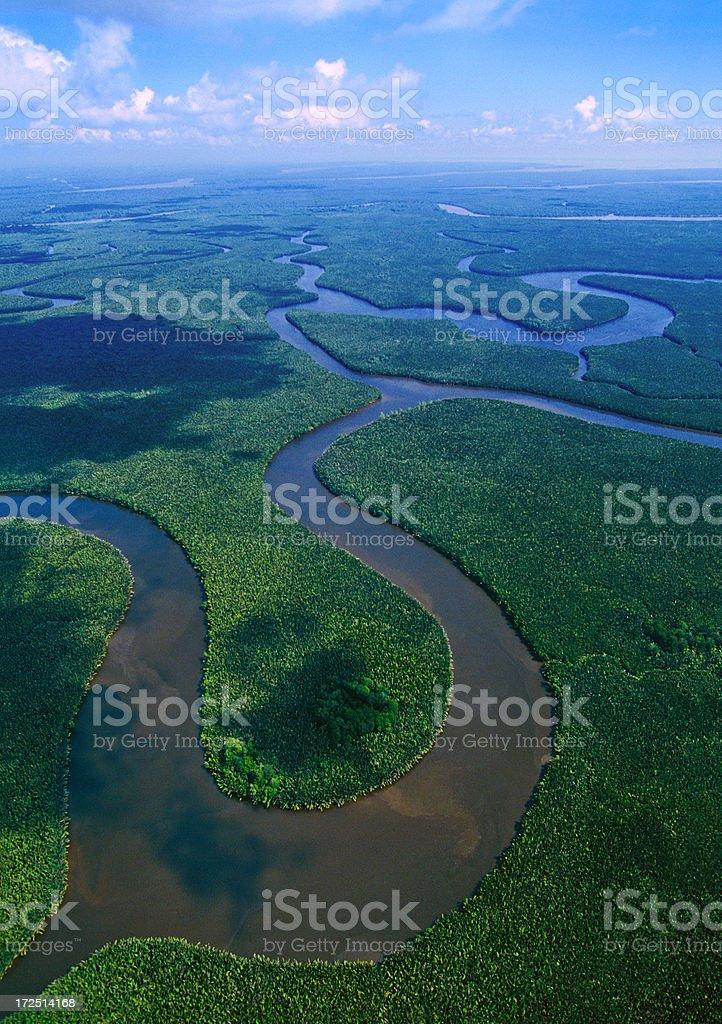 The Mahakam Delta in East Kalimantan stock photo