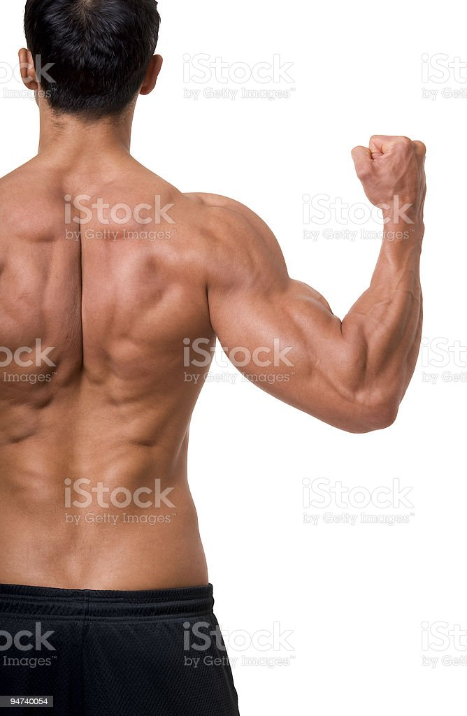 The male back. royalty-free stock photo