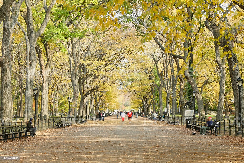 The Mall - Central Park - New York stock photo