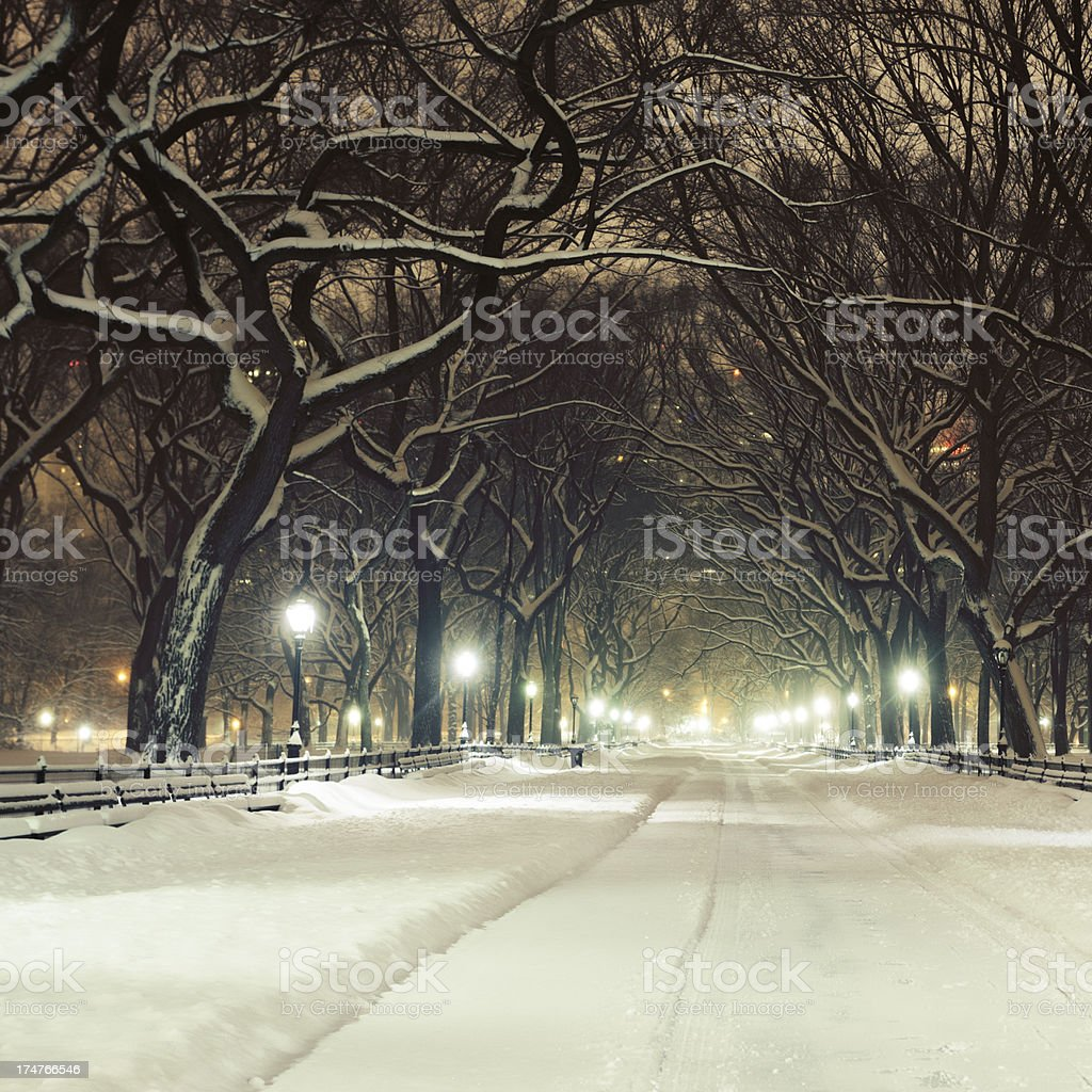 The Mall in Central Park at winter stock photo