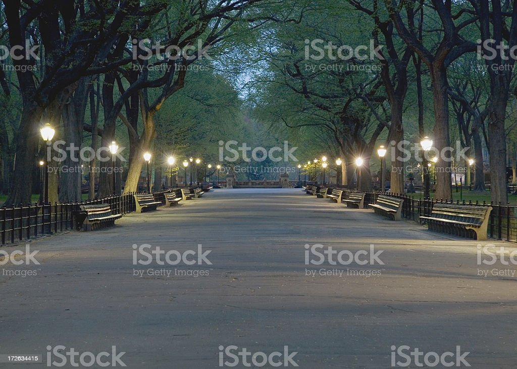 The Mall in Central Park royalty-free stock photo