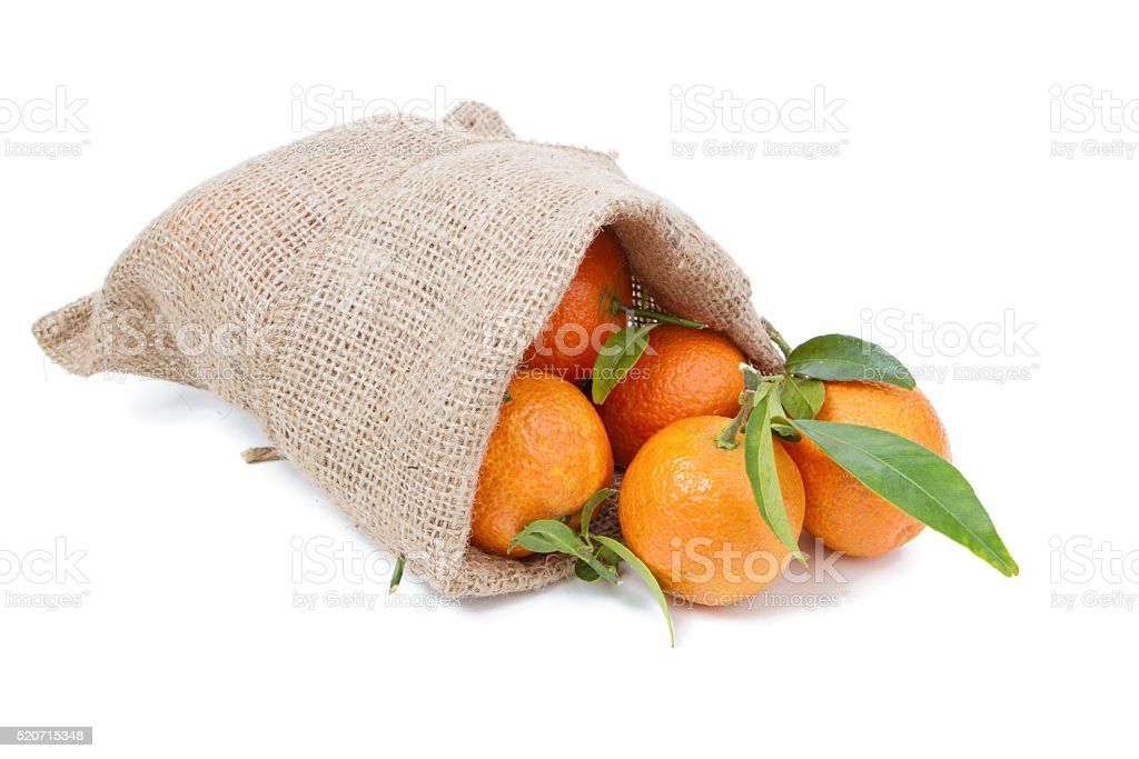 The mandarins in the sack stock photo