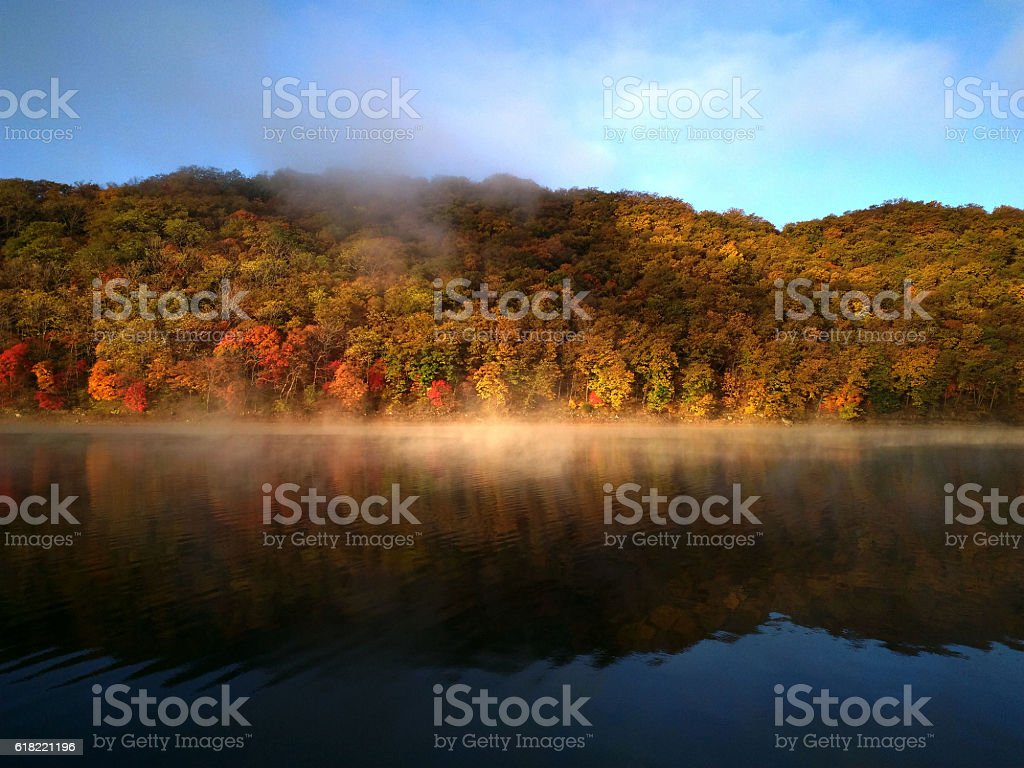 The maple forest and morning mist on lake stock photo