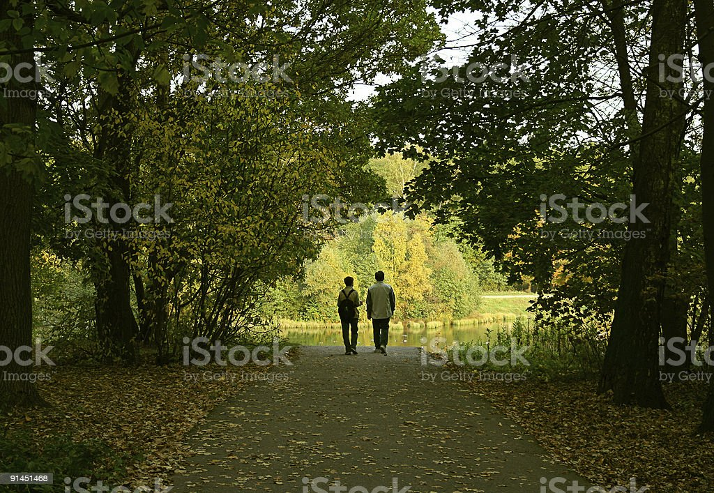 The married couple in a wood royalty-free stock photo