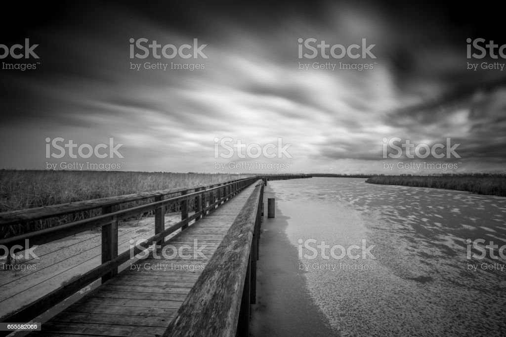 The Marsh Boardwalk at Point Pelee National Park in Ontario, Canada stock photo