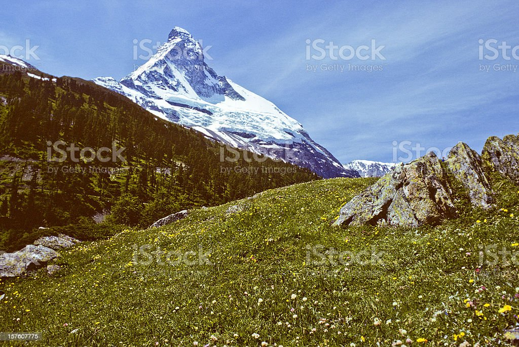 The Matterhorn and Meadow royalty-free stock photo
