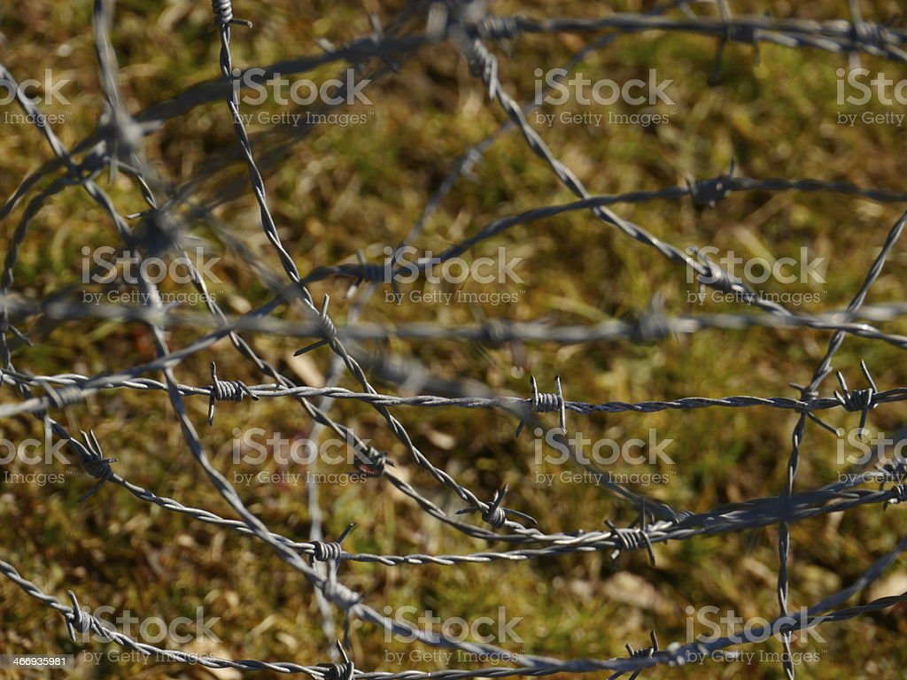 the metal wire on green background stock photo