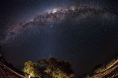The Milky Way arc from Namibia, fisheye view
