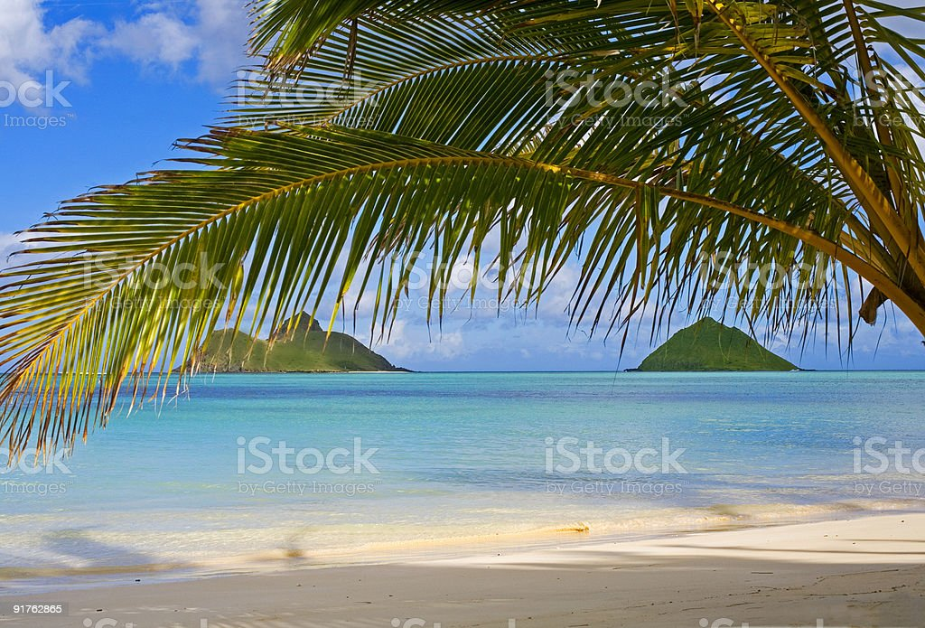 the mokulua islands stock photo