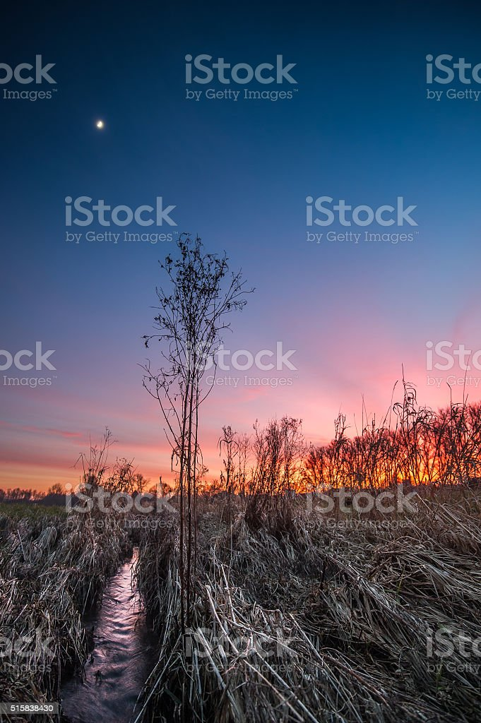 Der Mond steht am Himmel stock photo