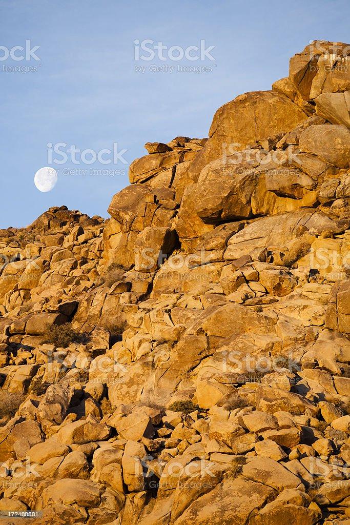 The moon. Joshua Tree national park royalty-free stock photo