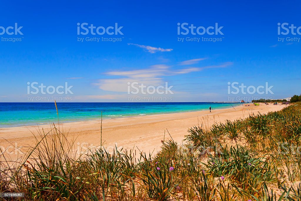 The most beautiful sandy beaches of Puglia:Torre Pali seaside. ITALY(SALENTO) stock photo