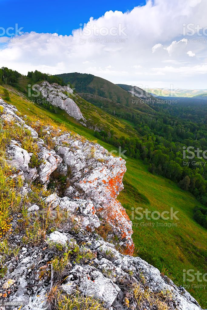 The mountain and gorge are covered with green trees stock photo