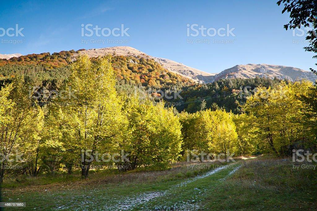 Горы осенью Стоковые фото Стоковая фотография