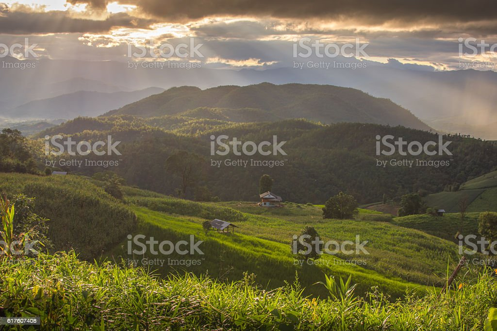 The mountain in Chaing Mai, Thailand stock photo