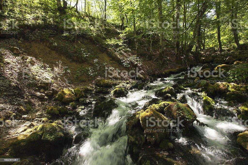 the mountain river royalty-free stock photo