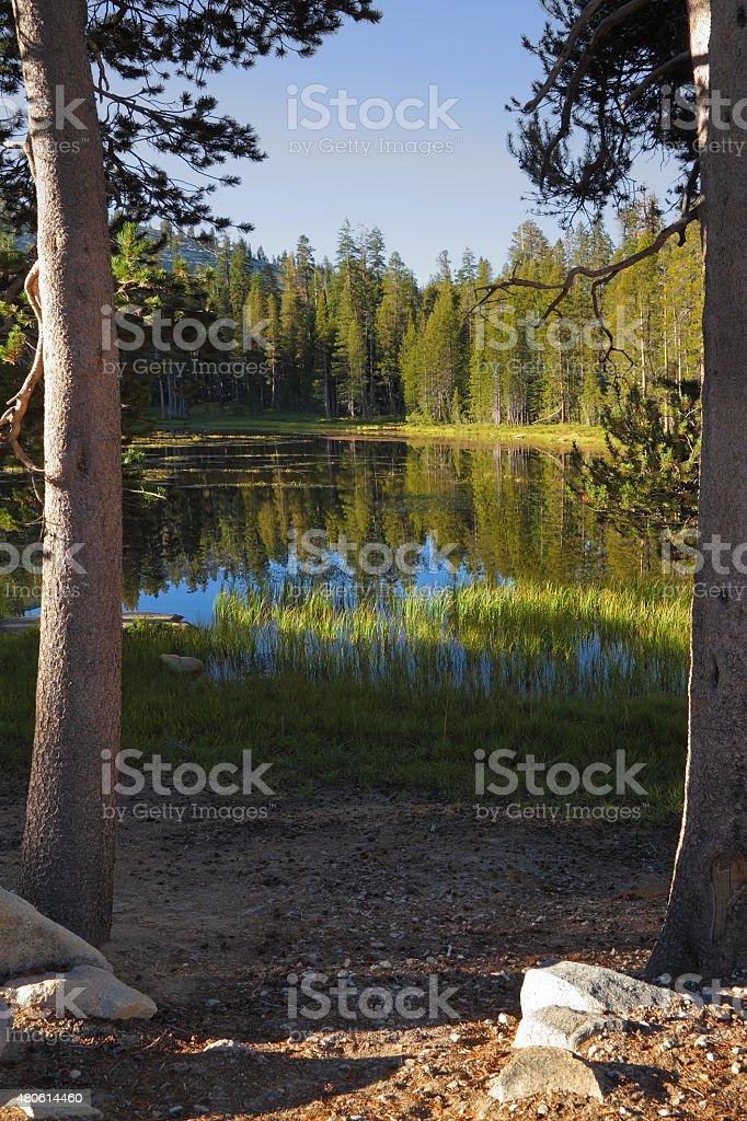 The mountain top Half Doum in Yosemite stock photo