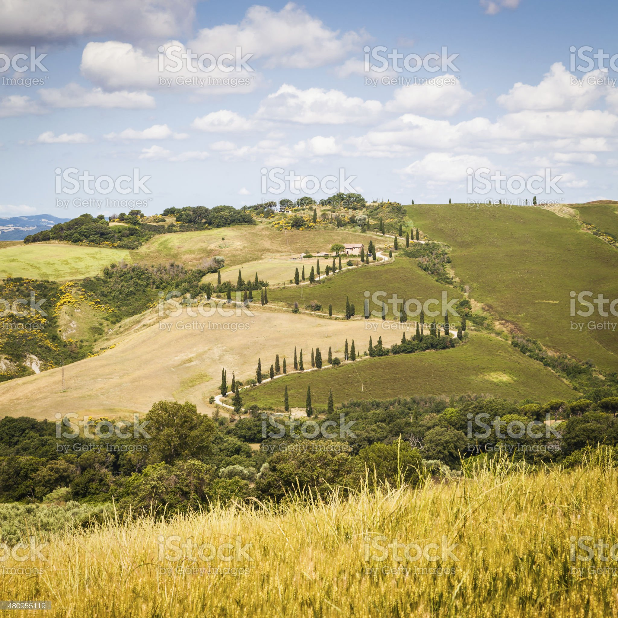 La Foce royalty-free stock photo