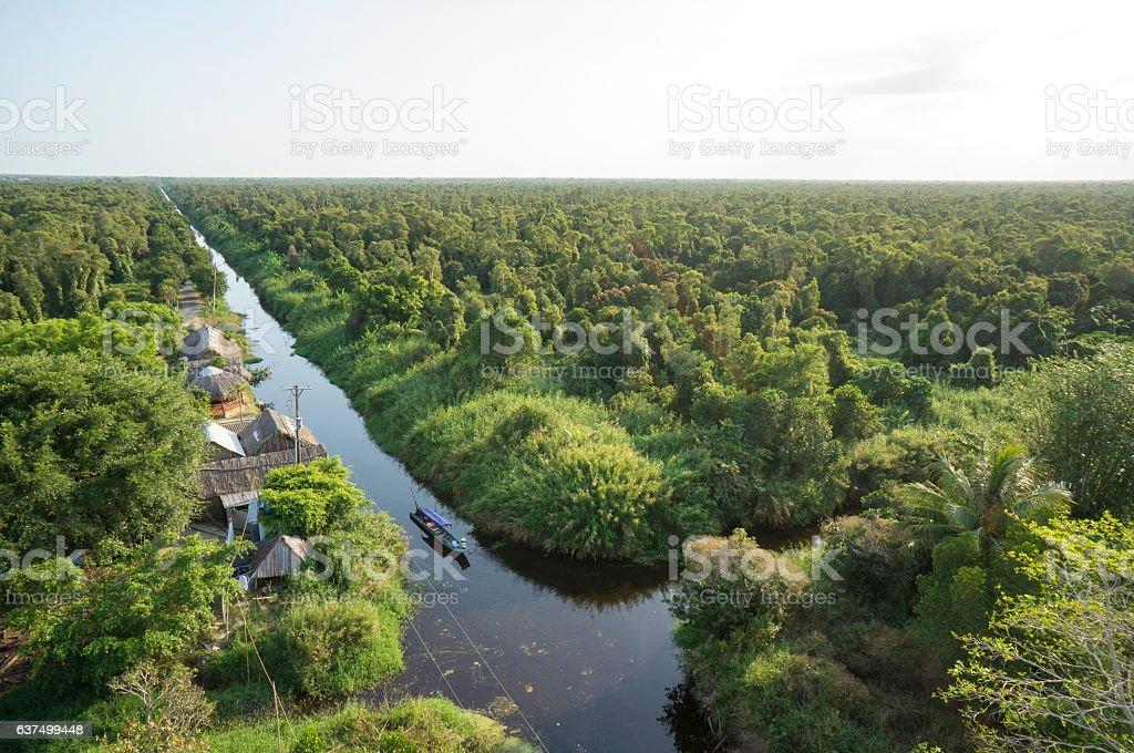 The Mui Ca Mau Biosphere Reserve stock photo