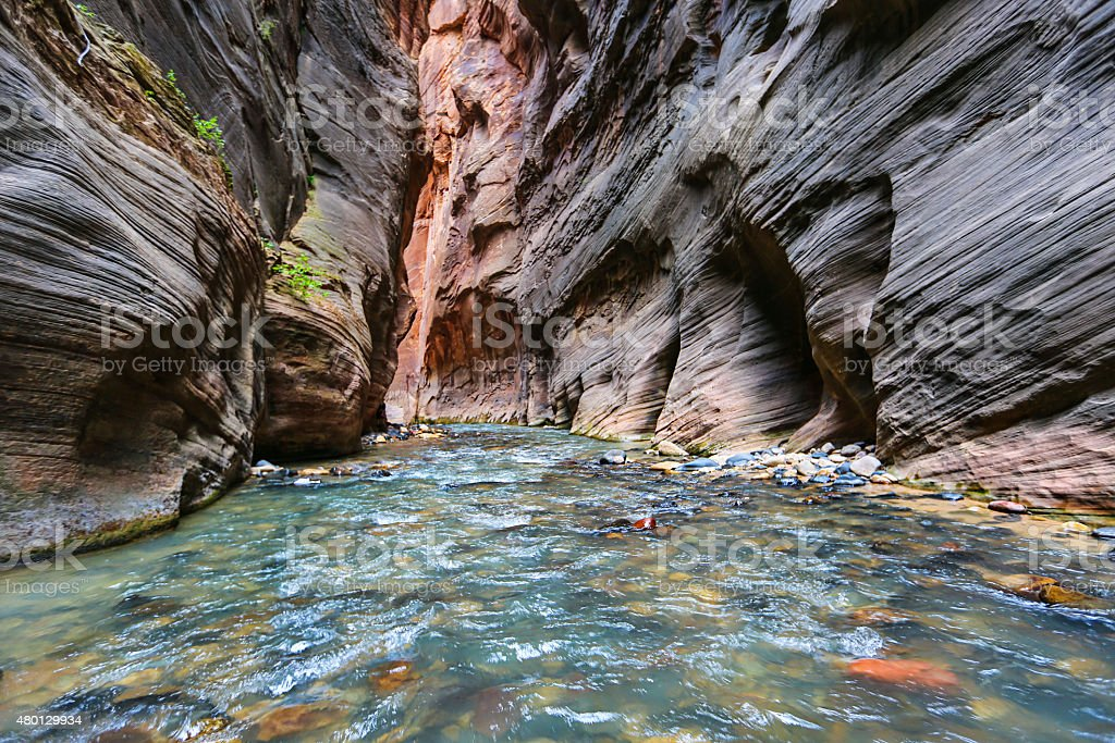 The Narrows. Zion National Park stock photo