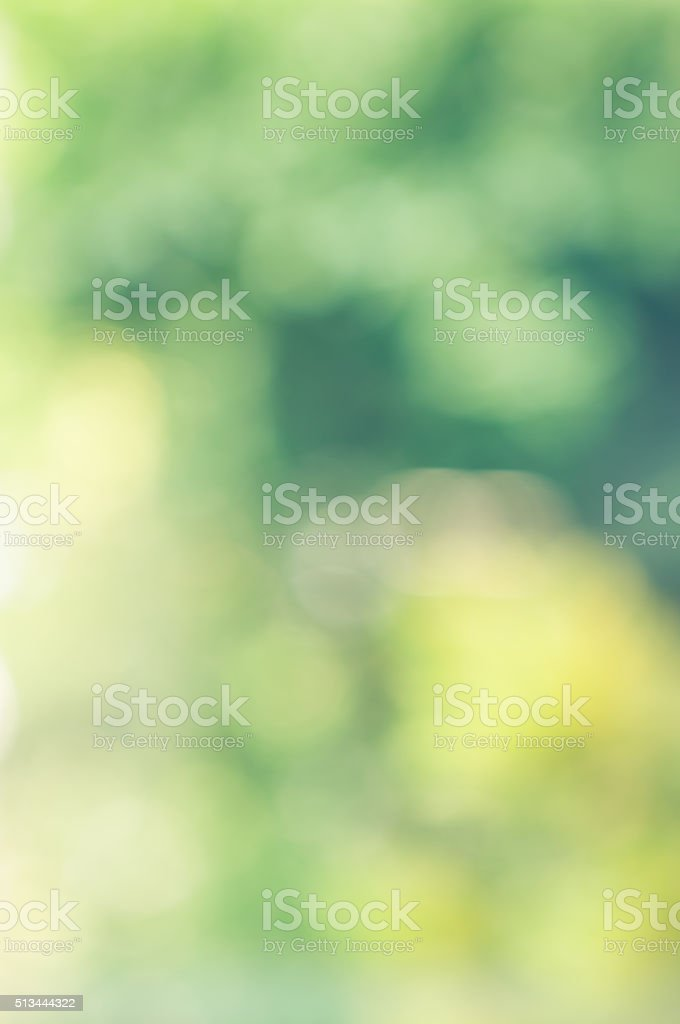 The natural blurry background. stock photo