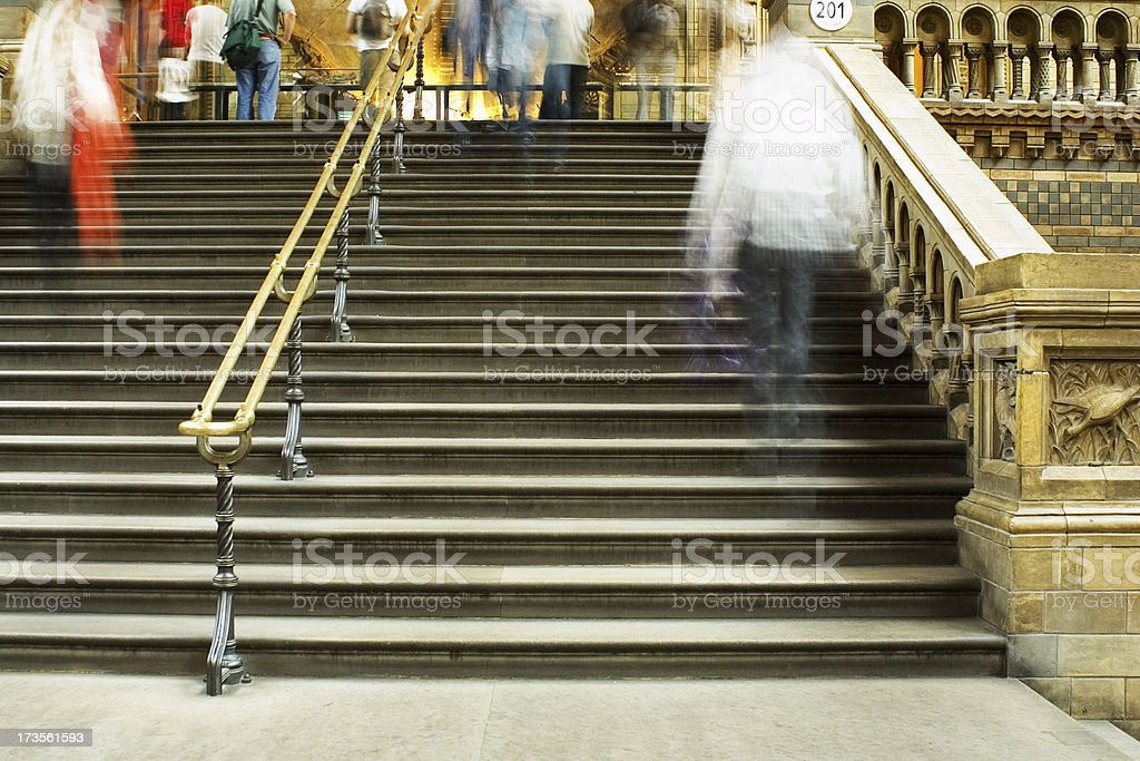 The Natural History Museum London royalty-free stock photo
