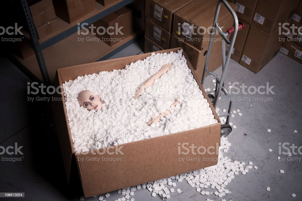 Beautiful Young Woman as Mannequin in Shipping Warehouse Box stock photo