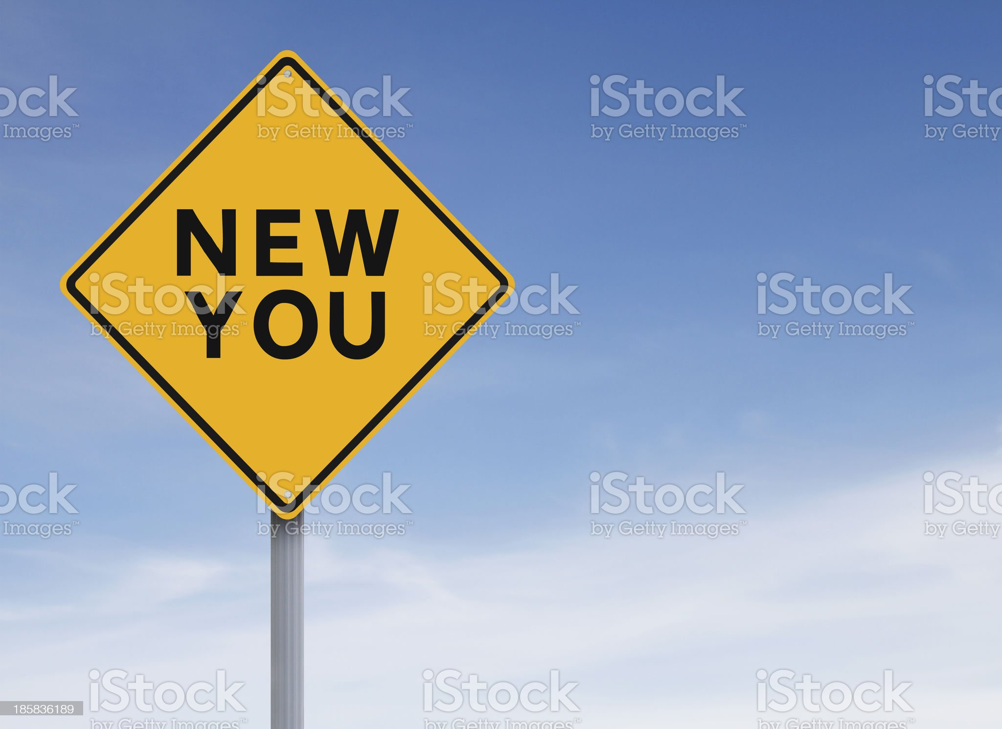 The New You royalty-free stock photo