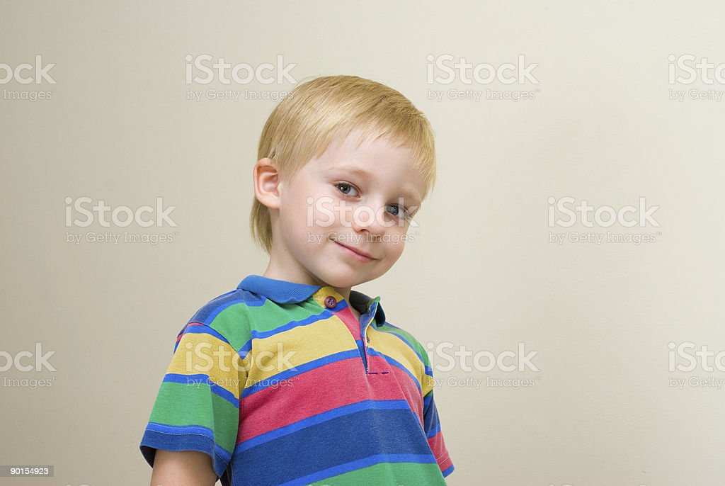 The nice Boy to school age. A portrait royalty-free stock photo