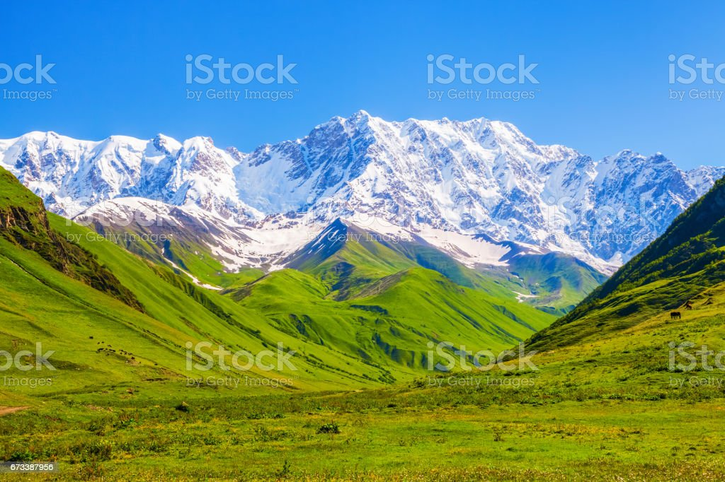 The nice view to the landscape of high mountains in the sunny day is opened from the green valley covered with grass. Upper Svaneti, Georgia, Europe. stock photo