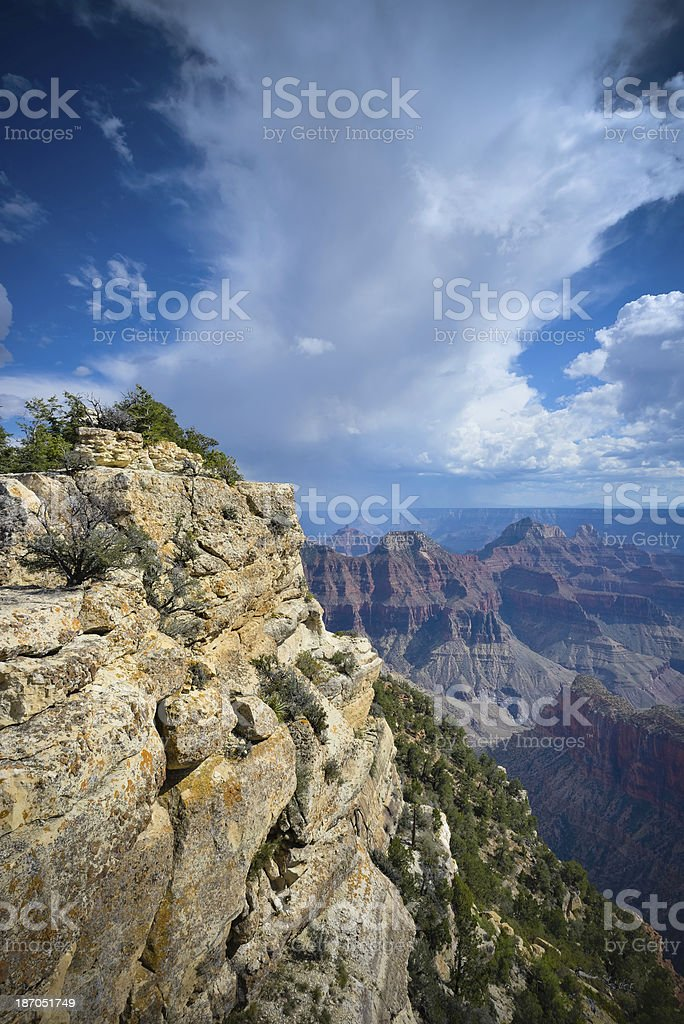 the north rim of the Grand Canyon royalty-free stock photo
