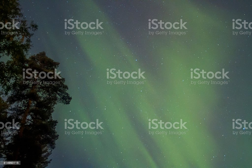 The Northern Lights over Finland royalty-free stock photo