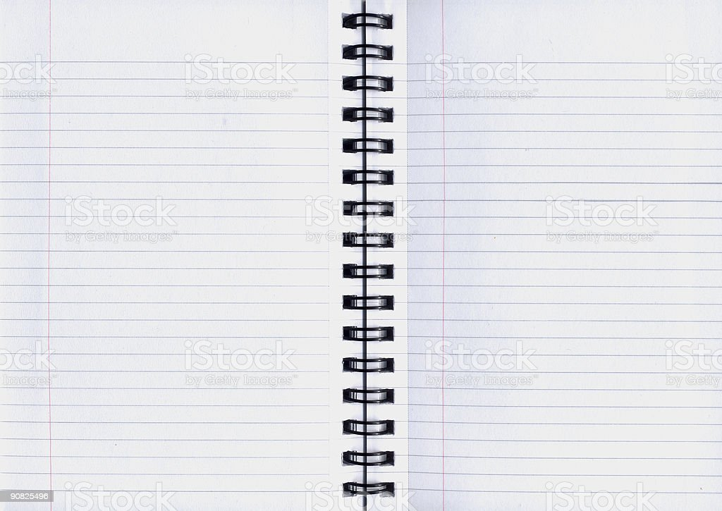 The Notebook royalty-free stock photo
