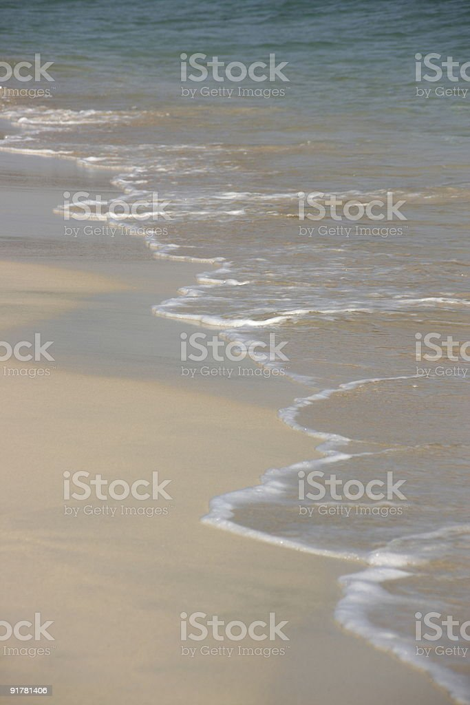 The ocean and beach royalty-free stock photo