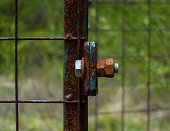 The old and rusty lock on a metal gate