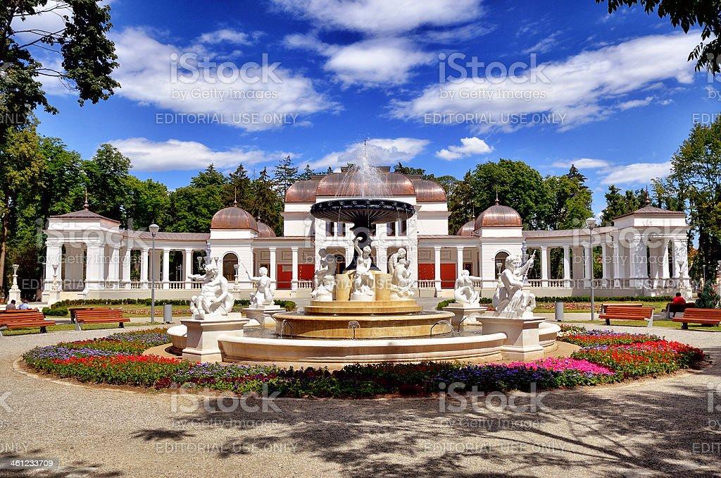 The Old Casino of Cluj-Napoca stock photo