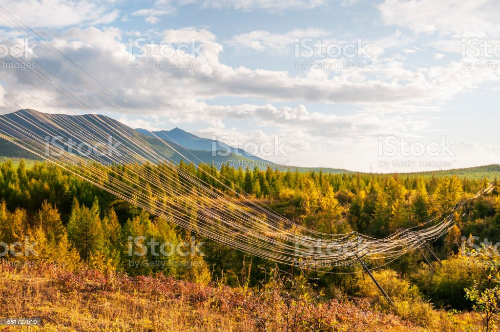 The old damaged power line in the taiga, in Eastern Siberia. stock photo