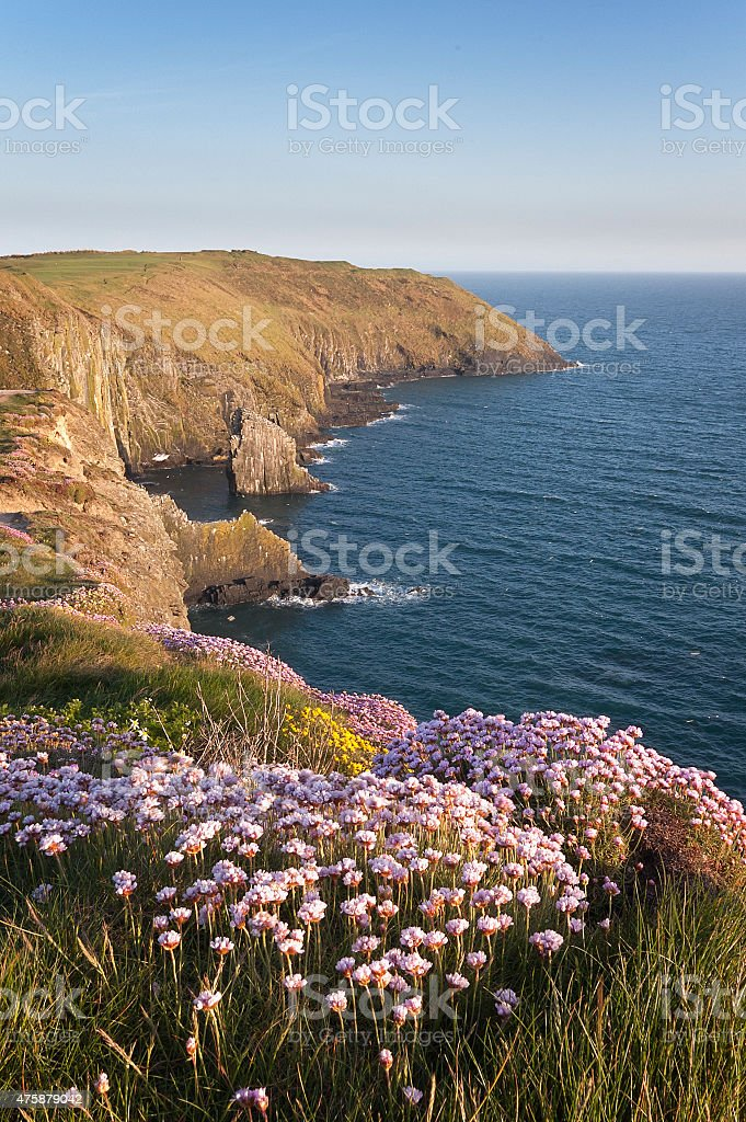 The Old Head of Kinsale in County Cork, Ireland. stock photo