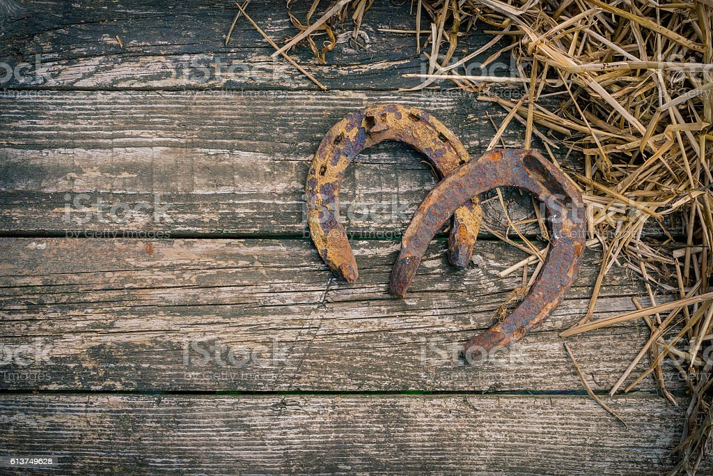 The old horseshoe and straw stock photo