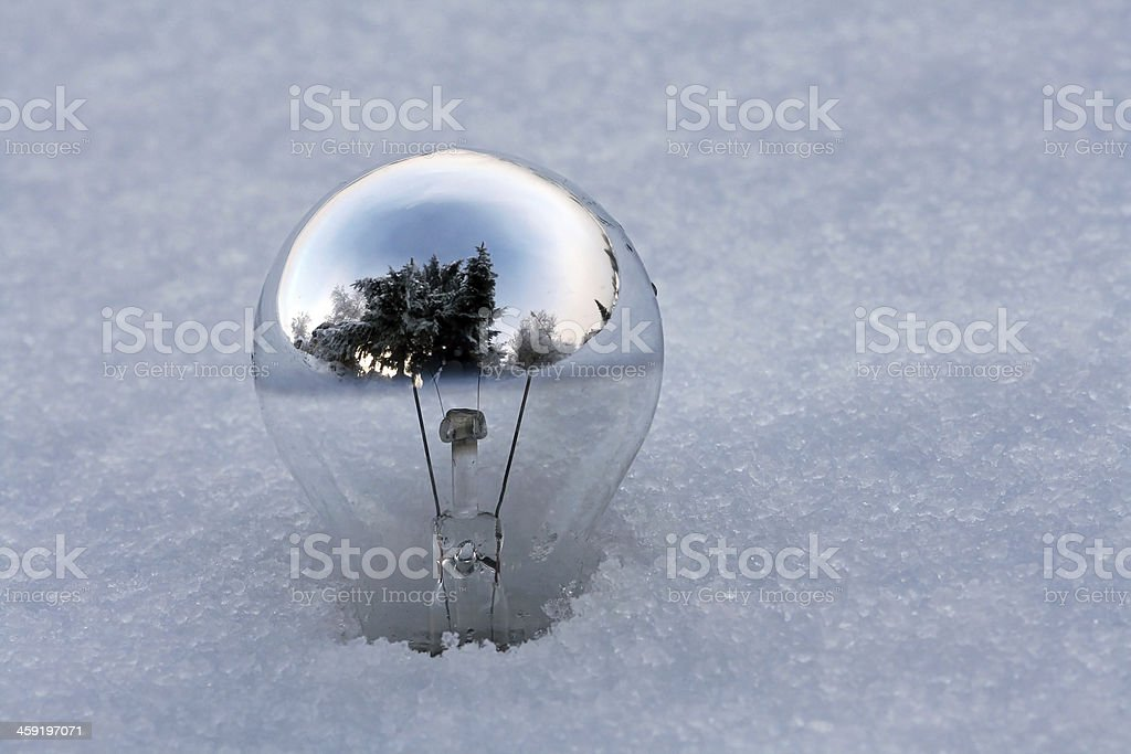 the old light bulb stock photo