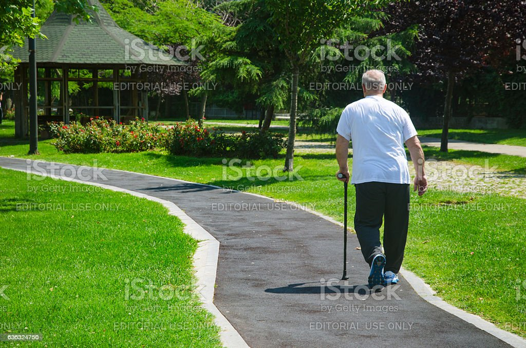 The old man walking in the park with a cane stock photo
