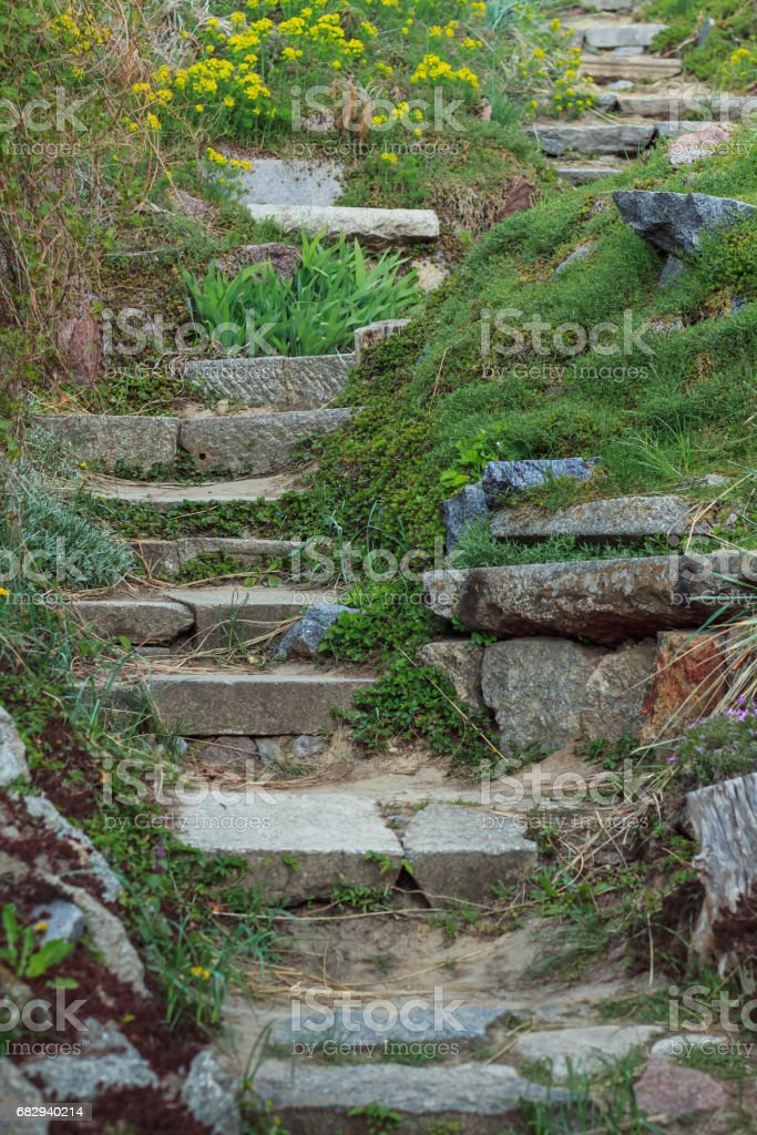 The old stone steps on a hill rising on either side grass. Stone stairs up a grass hill stock photo