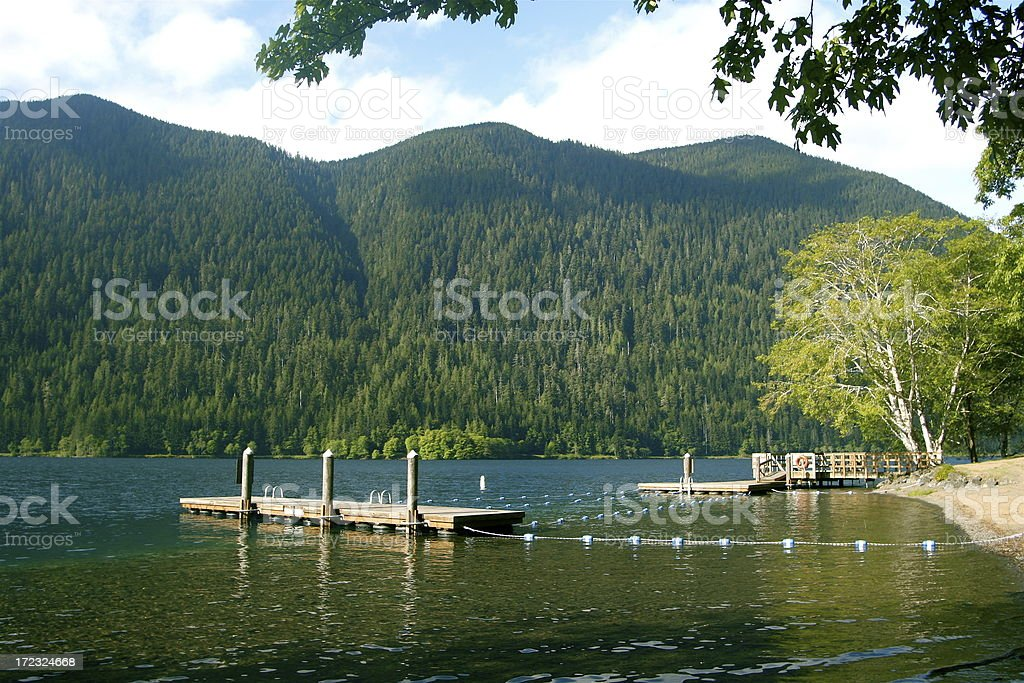 The Old Swimming Hole At Summer Camp royalty-free stock photo