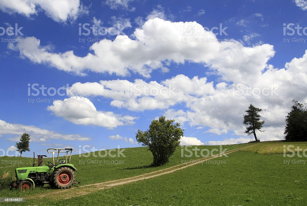 The old tractor stock photo