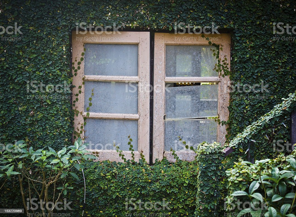 the old window royalty-free stock photo