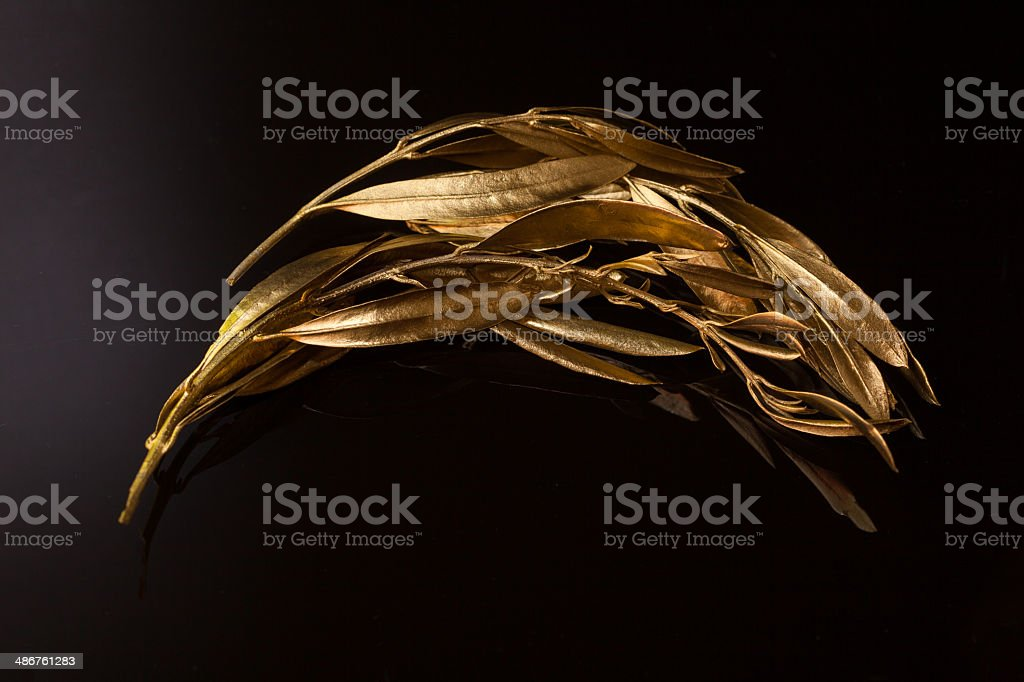 The olive wreath (kotinos) stock photo