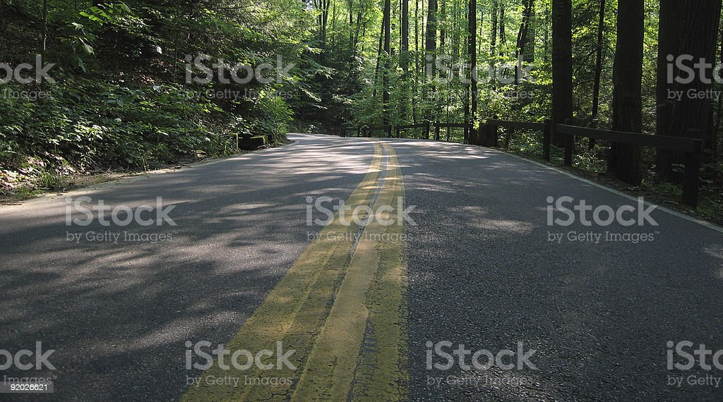 The One Less Traveled By stock photo