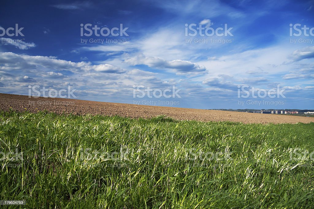 The opened field stock photo