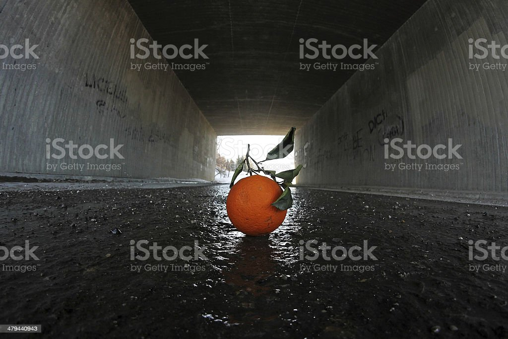 the orange stock photo
